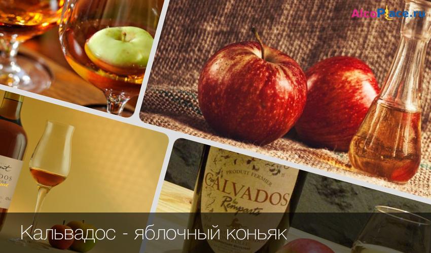 Приготовление яблочного кальвадоса в домашних условиях рецепт