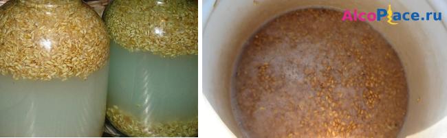 Самогон из ячменя - рецепт приготовления браги с дрожжами и без