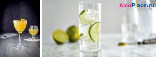 Популярные коктейли с джином - рецепты их приготовления в домашних условиях