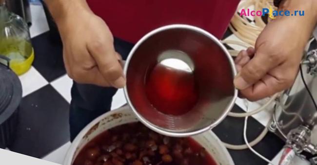 рецепт самогона из алычи в домашних условиях