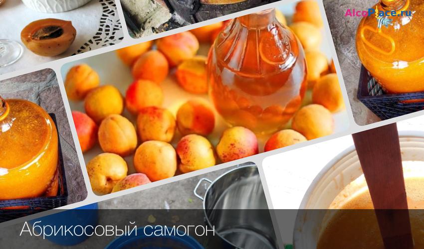 Бражка из абрикосов в домашних условиях
