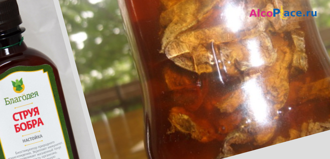 рецепт приготовления бобровой струи на водке