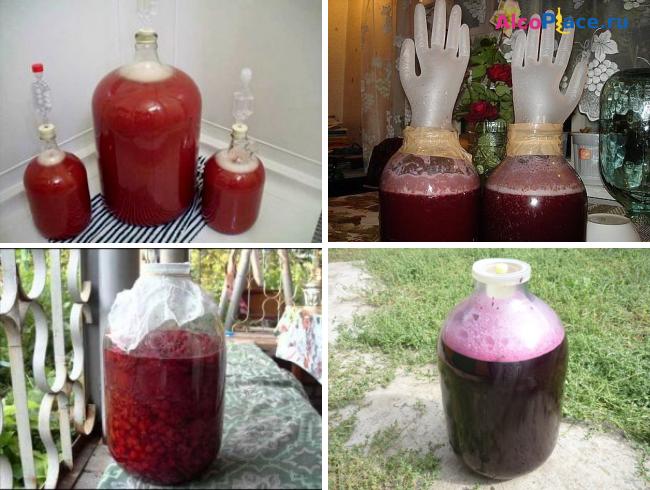 Как приготовить из забродившего компота вино в домашних условиях 77