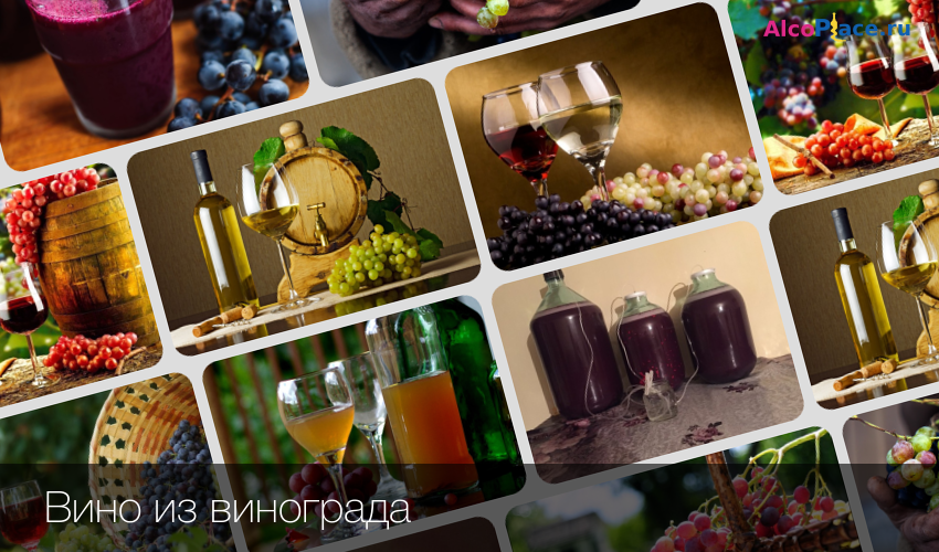 Вино из калины.приготовить в домашних условиях