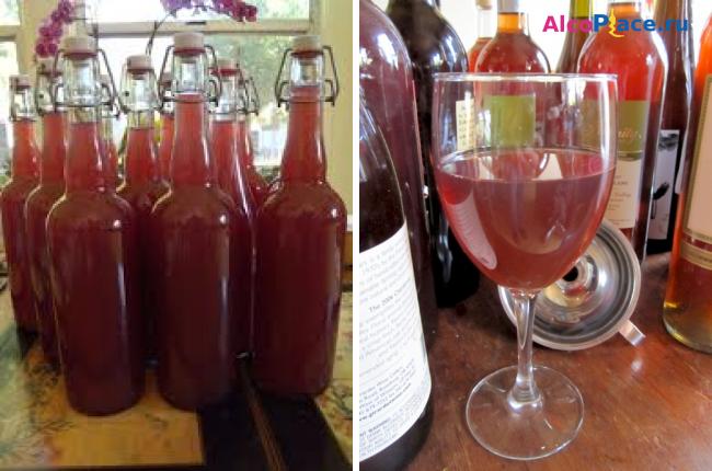 Домашнее вино из сливы рецепт и технология приготовления