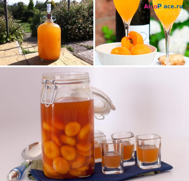 Сделать вино из абрикосов в домашних условиях рецепт 102