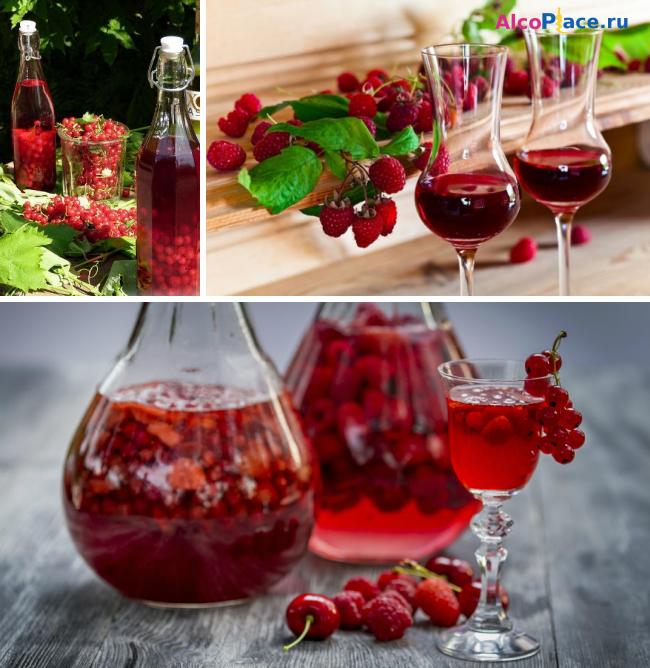 Вино из ягод черной смородины в домашних условиях 731