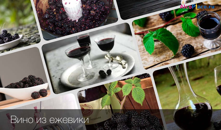 Ежевичное вино своими руками