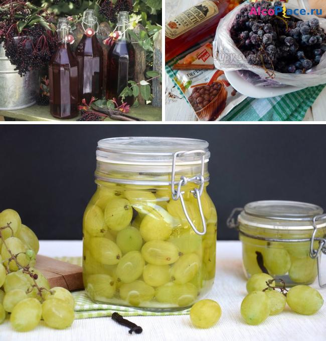 Как из винограда сделать настойку из 561